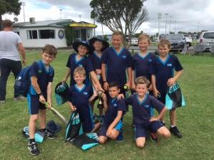Cricket 2018 (1)