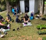 Anna NZ Garden